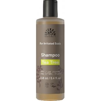 Urtekram Šampon s tea tree pro podrážděnou pokožku BIO 250 ml