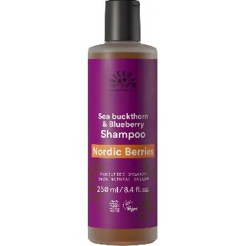 Urtekram Šampon se severskými bobulemi na poškozené vlasy BIO 250 ml