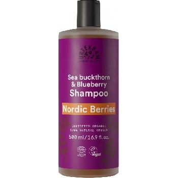 Urtekram Šampon se severskými bobulemi na poškozené vlasy BIO 500 ml