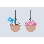 Dry Planet Vodné kryštály pre udržanie vlhkosti pôdy