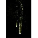 Solárny záhradný reflektor Selene sada 2 svetiel