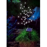 Solární světelný stromeček