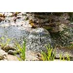 Solárna fontána Esotec WaterSplash 20W 1350l 101014