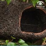 Ptačí polobudka Brushwood pro červenky